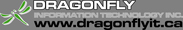 Dragonfly Information Technology Inc.